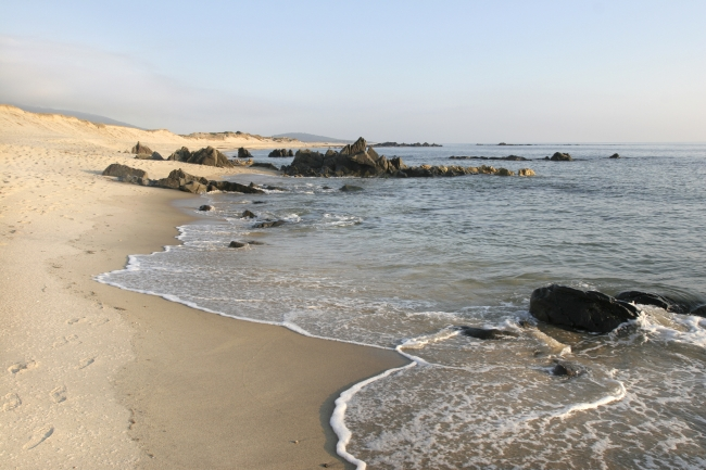 praia de afife.jpg